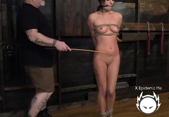 Haven Rae - No Haven For Haven Rae (2020/DungeonCorp.com/FullHD)